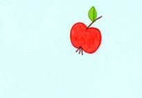 Der Igel Kasimir und der Apfel