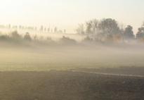 Nebel zieht auf - Sachinformationen über Nebel
