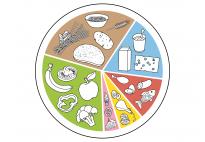 Ausgewogene Ernährung für Kinder - der gesunde Teller