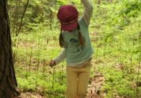 Projektvorstellung Bewegungsabenteuer im Wald