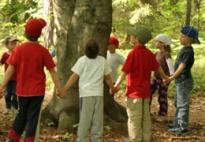 1. Waldtag: Wir entdecken den Wald