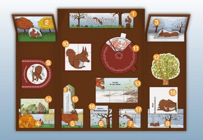 project plan squirrel lapbook for prek kindergarten and