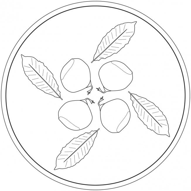 Maroni Mandala