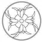 Tulpen-Mandala 2