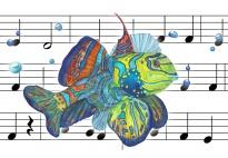 Der bunte Fisch: ein Lied für Sommerfeste und Fischethemen