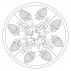 Sommerfrüchte-Mandala