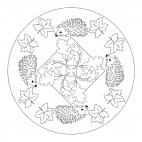 Mandala autunnali: ricci
