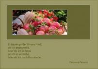 F. Petrarca