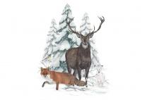 Tiere im Winterwald: Wie Waldtiere überwintern