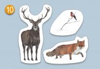 Mini Lapbook Tiere Im Winterwald Fur Kindergarten Kita Und Schule