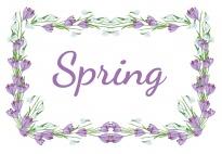 Portfolio Page: Spring Frame