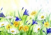 Viele kleine Blumen - ein Mitmachgedicht