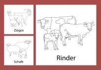 Aktionskarten: Tierfamilien am Bauernhof - sw