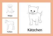 Aktionskarten: Tierkinder am Bauernhof - sw