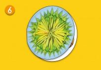 Mini-Lapbook Sonnenblume: Klappkreis