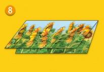 Mini-Lapbook Sonnenblume: Klappkarte