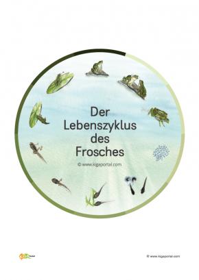 Beste Arbeitsblatt Auf Pflanzen Für Kindergarten Zeitgenössisch ...