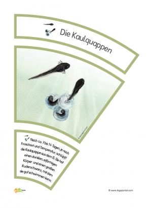 Fantastisch Kindergarten Lernen Arbeitsblatt Zeitgenössisch ...