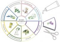 Early Blooming Spring Flowers: Flower Wheel to Glue