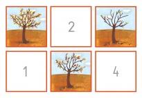 Bildgeschichte: Baum im Herbst bt.