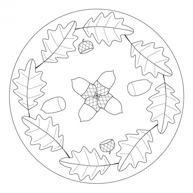 acorn  oak leaf mandala for prek kindergarten and
