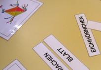 Herbstwörter-Spielanleitung