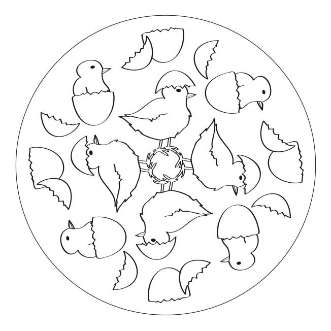 Kueken-Mandala 4