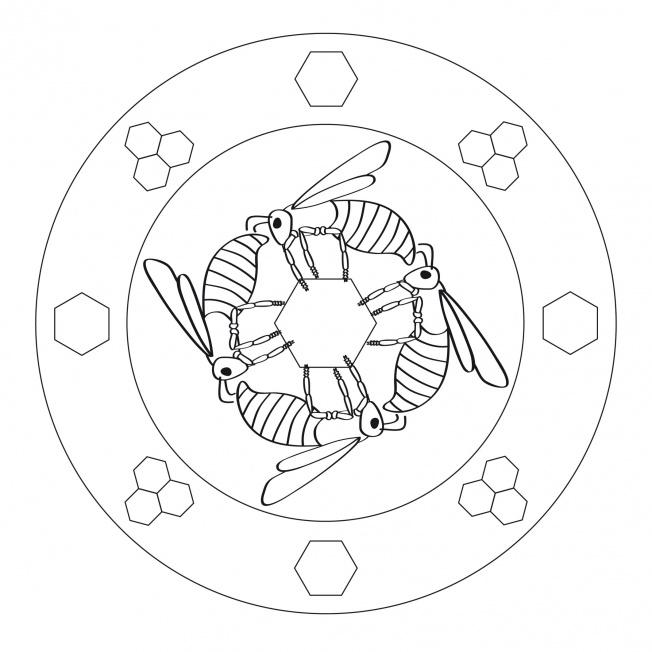 Bienen-Mandala-2