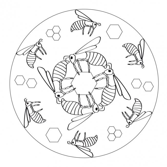 Bienen-Mandala 1