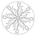 Frühlings-Mandala mit Tulpen 1